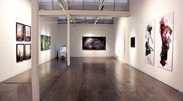 Contemporary art exhibition, Group exhibition, The Significant Other at Arc One Gallery, Melbourne