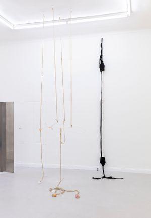the straps no. 4 by Fanny Gicquel contemporary artwork