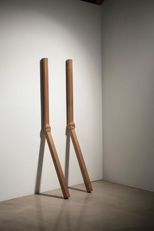 Mutation-Pair 7918 by Park Suk Won contemporary artwork