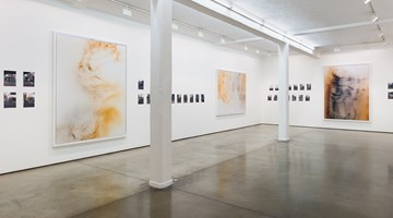 Contemporary art exhibition, Wolfgang Tillmans, Wolfgang Tillmans at Maureen Paley, London