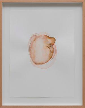 seed, vii by Yaşam Şaşmazer contemporary artwork