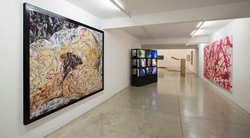 Contemporary art exhibition, Group Exhibition, O Corpo e a Obra de Arte (The Body and the Work of Art) at Galeria Nara Roesler, São Paulo, Brazil