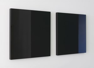 Untitled by Robert Irwin contemporary artwork mixed media