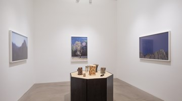 Contemporary art exhibition, Catherine Opie, So long as they are wild at Lehmann Maupin, Hong Kong