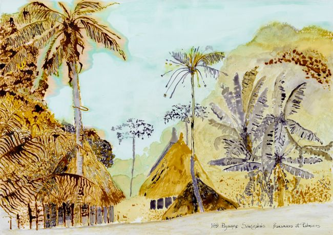 Postcards from Africa: Banana and palm trees, Senegal by Sue Williamson contemporary artwork