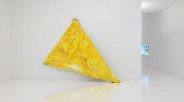 Contemporary art exhibition, Masato Kobayashi, Family of this planet at ShugoArts, Tokyo, Japan