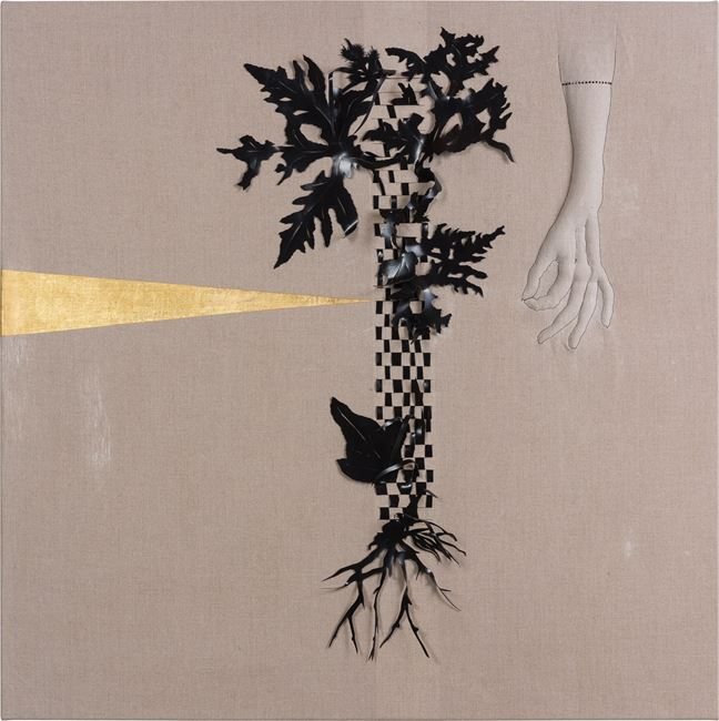 Arrangement for The Galapagos (Pteris pedata, after Darwin) by Caroline Rothwell contemporary artwork