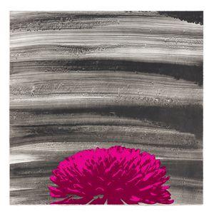 Chrysanthemum by Russel Wong contemporary artwork