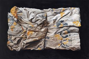 Turning the page, Shifting Landscapes by Marina Cruz contemporary artwork