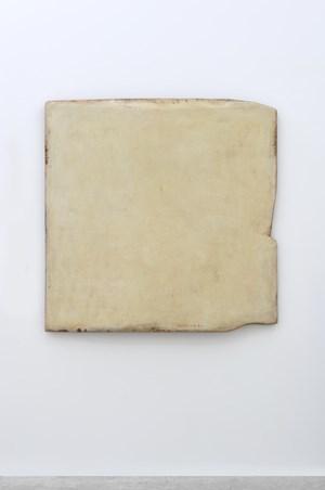 Nongwa - 1 by Su Xiaobai contemporary artwork