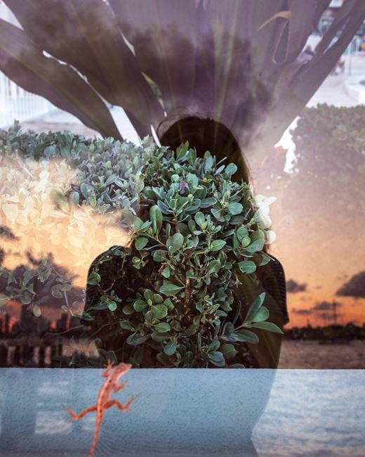 Biscayne Bay by Anastasia Samoylova contemporary artwork