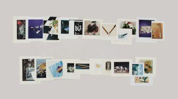 Contemporary art exhibition, Taryn Simon, The Color of a Flea's Eye: The Picture Collection at Gagosian Shop, 976 Madison Avenue, New York, USA