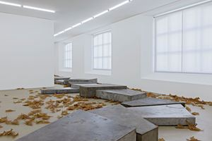 Evaporated Pools by Martin Boyce contemporary artwork