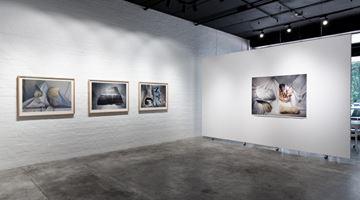 Contemporary art exhibition, Marian Drew, Strata at THIS IS NO FANTASY dianne tanzer + nicola stein, Melbourne