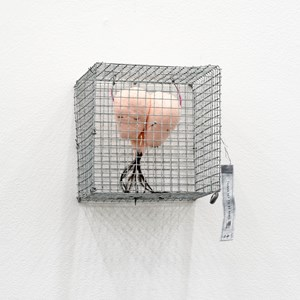 Things Yet To Be Named 14 by Julia Morison contemporary artwork