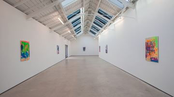 Contemporary art exhibition, Hayley Tompkins, After a Long Sleep, It Woke Up at The Modern Institute, Osborne Street, United Kingdom