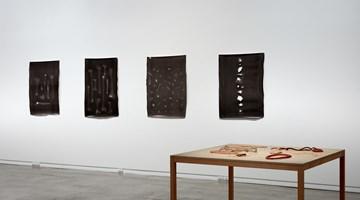 Contemporary art exhibition, Mark Adams, Areta Wilkinson, Repatriation at Two Rooms, Auckland