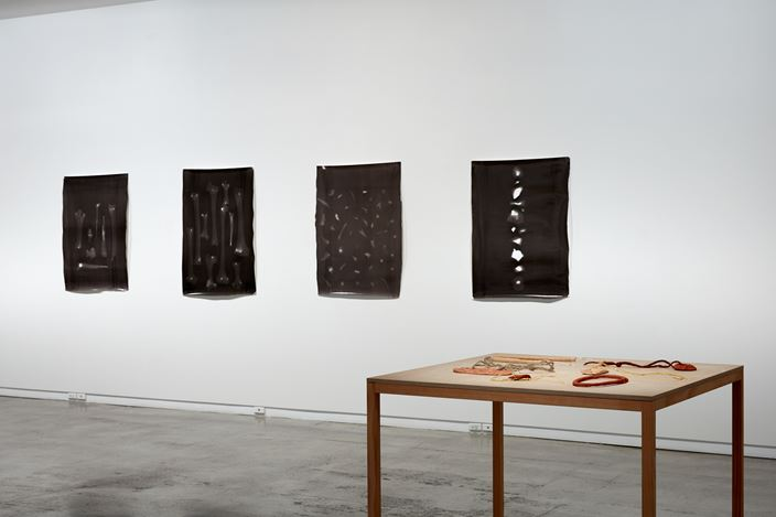 Exhibition view: Areta Wilkinson and Mark Adams, Repatriation, Two Rooms (20 September–20 October 2018).Courtesy Two Rooms.