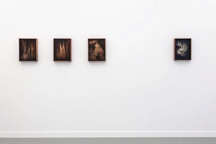 Exhibition view: Martín Soto Climent, Amatl, Andréhn Schiptjenko, Paris (11 March–30 April 2021). Courtesy Andréhn Schiptjenko.