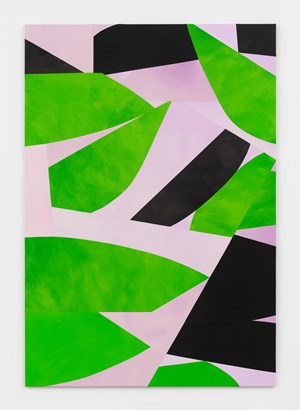 Leaves and Shadows, Lilac Background by Sarah Crowner contemporary artwork