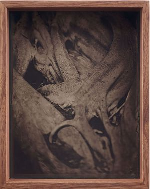 Detail (Collodion 2) by Martin Soto Climent contemporary artwork