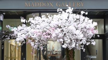Maddox Gallery contemporary art gallery in Maddox Street, London, United Kingdom