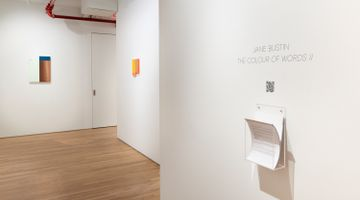 Contemporary art exhibition, Jane Bustin, The Colour of Words II at Jane Lombard Gallery, New York, USA
