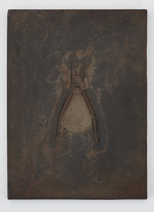 Iron of Iron and/or Tools; Pliers by Tatsuo Kawaguchi contemporary artwork