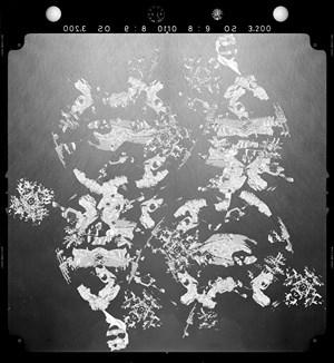 New Order 04 by Yuki Yamazaki contemporary artwork