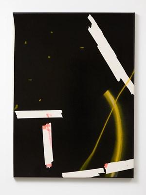 Bad Beast by Tira Walsh contemporary artwork
