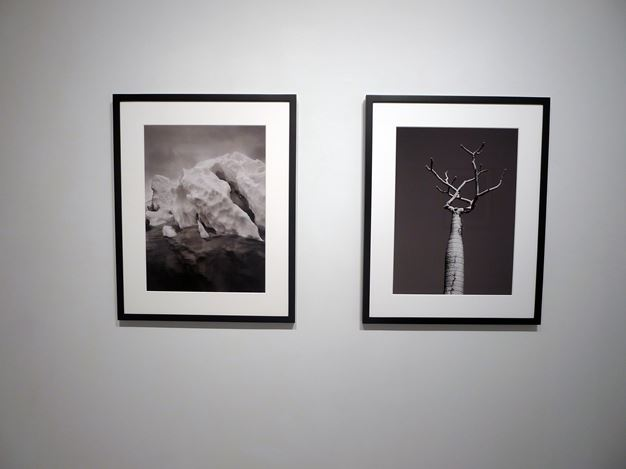 Exhibition view: Sebastião Salgado, Landscapes, 2004 – 2018, Sundaram Tagore Gallery, Chelsea, New York (11 October–10 November 2018). Courtesy Sundaram Tagore Gallery.