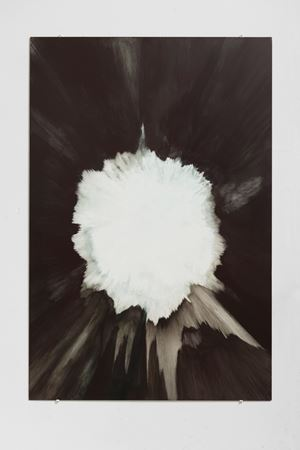 Controlled Explosion I by Sarah Kogan contemporary artwork