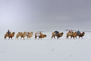 'The journey back to nature', Back to Nature, Mongolia by Marc Progin contemporary artwork