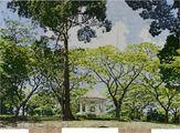 D.120 Botanical Gardens Singapore by Gary Carsley contemporary artwork 2