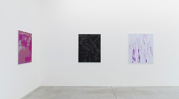 Contemporary art exhibition, Evi Vingerling, Upbringing at Kristof De Clercq gallery, Ghent