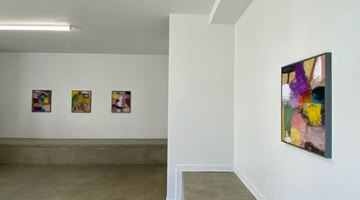 Contemporary art exhibition, Robin Neate, Recent Paintings at Hamish McKay, Wellington