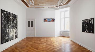 Contemporary art exhibition, Alpin Arda Bağcık, Apocrypha at Zilberman Gallery, Berlin