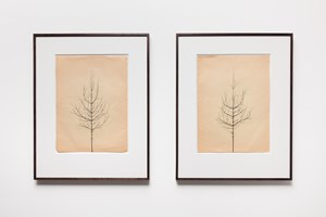 Pair of Winter Drawings by Peter Liversidge contemporary artwork works on paper