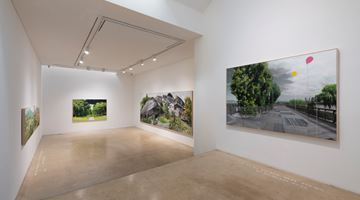 Contemporary art exhibition, Honggoo Kang, Study of Green-Seoul-Vacant Lot at One And J. Gallery, Seoul