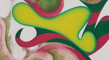 Contemporary art exhibition, Lesley Vance, Slipstream at Xavier Hufkens, Van Eyck, Brussels