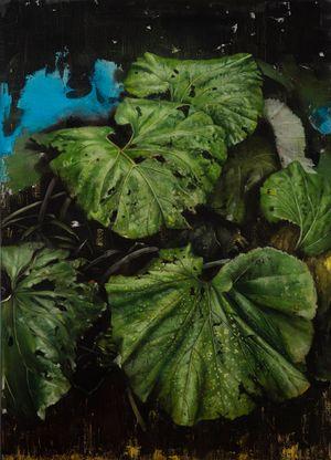 Butterbur by Helena Parada Kim contemporary artwork
