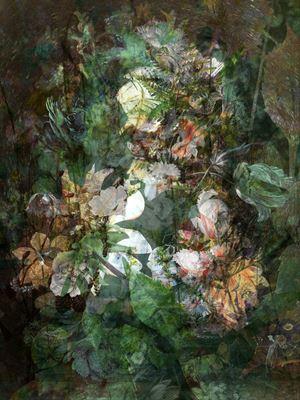 Moving Flower #4 by Kim Boske contemporary artwork