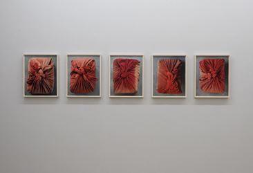 Exhibition view: DWELLING Part II, Group exhibition,Galerie Mirchandani + Steinruecke, Mumbai (30 March–27 May 2017). CourtesyGalerie Mirchandani + Steinruecke, Mumbai.