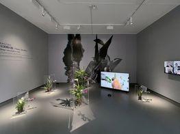 "aaajiao<br><em>Deep Simulator</em><br><span class=""oc-gallery"">Tabula Rasa Gallery</span>"
