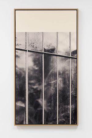 Serres du Jardin d'Auteuil, Paris by Paul Chapellier contemporary artwork