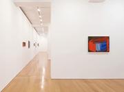 Howard Hodgkin: Painting from Memory