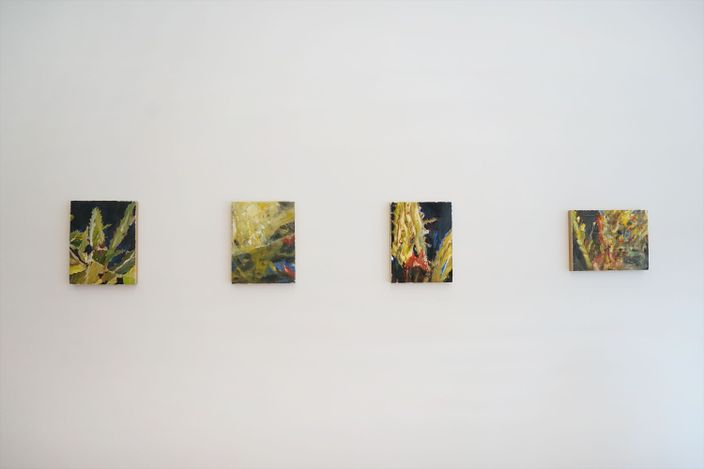 Exhibition view: Chafa Ghaddar, Cacti in a Daydream, Galerie Tanit, Beyrouth (1 July–18 September 2021). Courtesy Galerie Tanit.