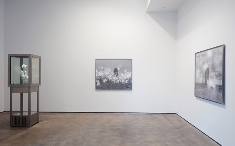 Julian Charrière, Freeze, Memory, Exhibition view, 2016. Images courtesy of Sean Kelly, New York.