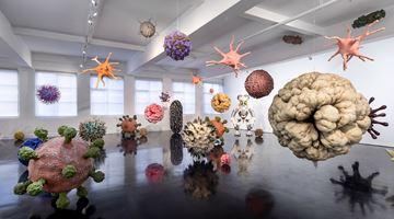 Contemporary art exhibition, Christopher Langton, Colony at Tolarno Galleries, Melbourne
