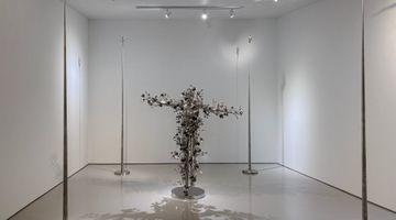Contemporary art exhibition, Li Hongbo, Empathizing at Eli Klein Gallery, New York